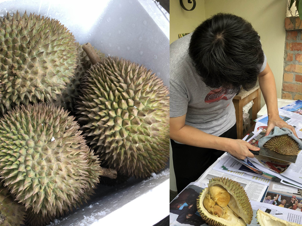 Day4_durian