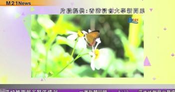 【M21 NEWS】 2013-10-15張炳良與青年談長遠房策